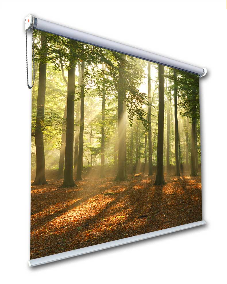 Backdrop Roller Blind