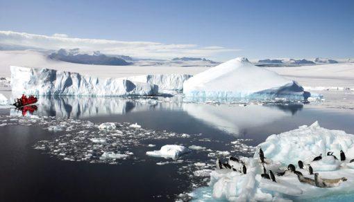 antarctic backdrop