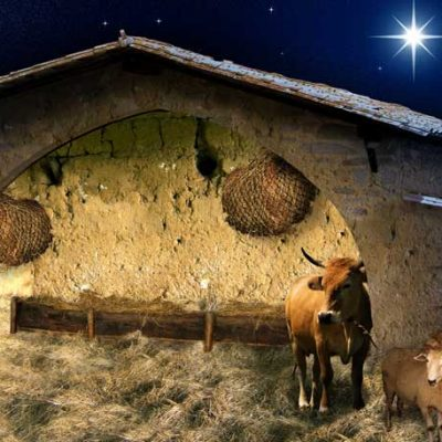 nativity stable scene backdrop