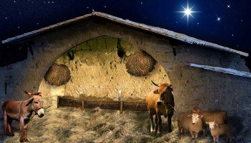 nativity stable scene backdrop