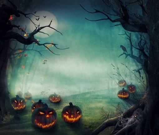halloween pumpkin forest backdrop