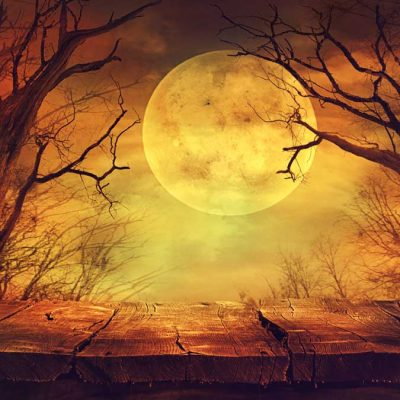 halloween backdrop moon