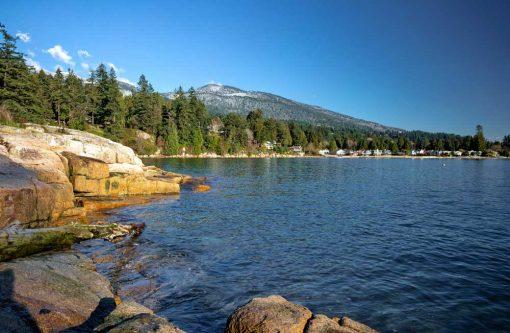 Coastline Backdrop