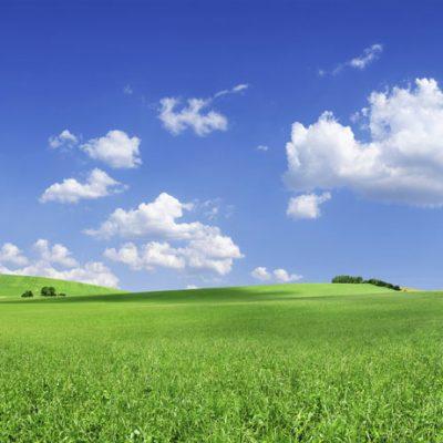 rolling hills backdrop