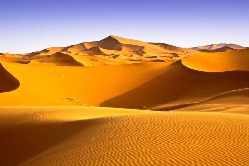 desert backdrop