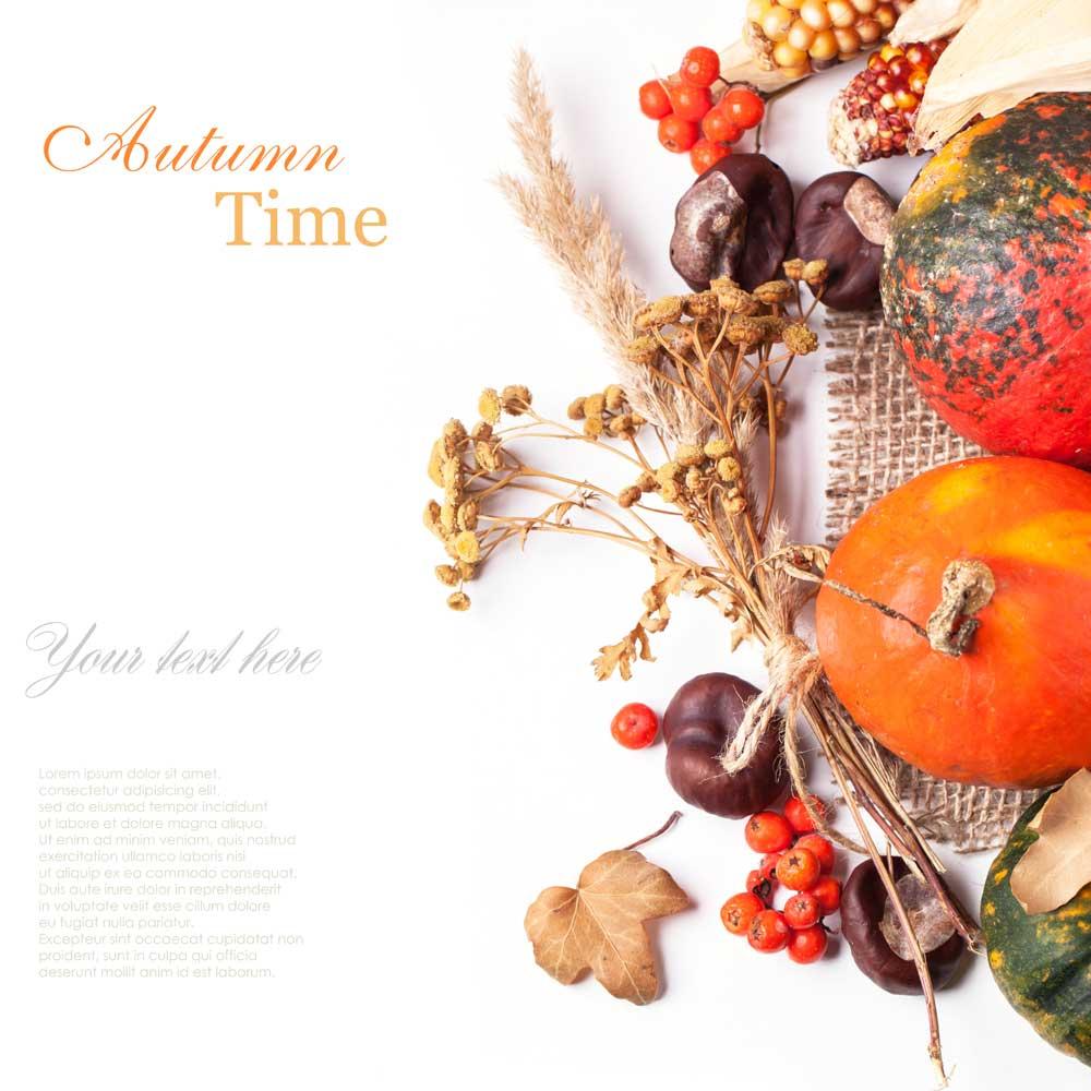harvest festival autumn backdrop