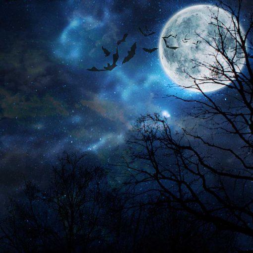 halloween moon backdrop