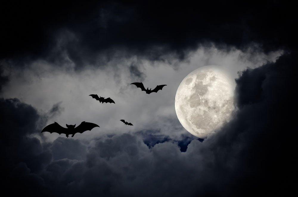 halloween moon backdrop 3
