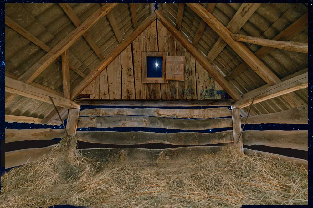Nativity-Stable-backdrop