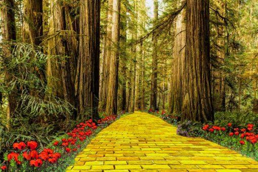 Yellow-brick-road backdrop