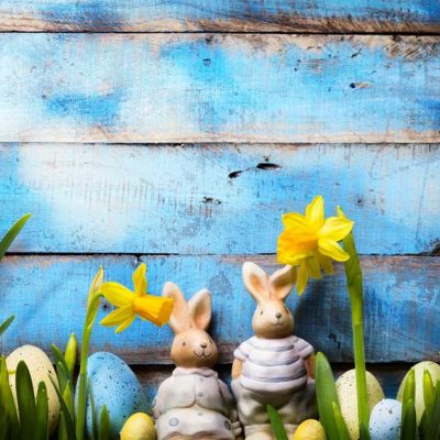 Daffodils,-bunny-and-wood