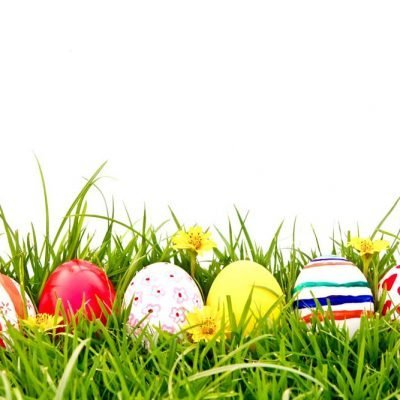 painted-eggs-in-grass backdrop