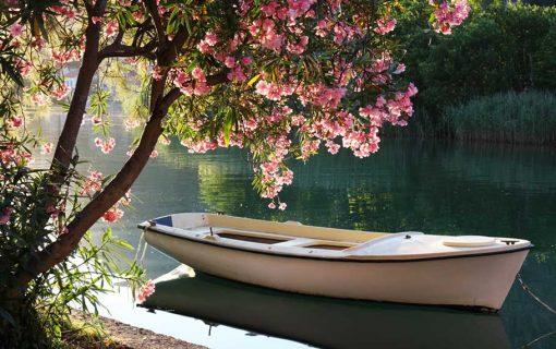 boat-on-lake backdrop
