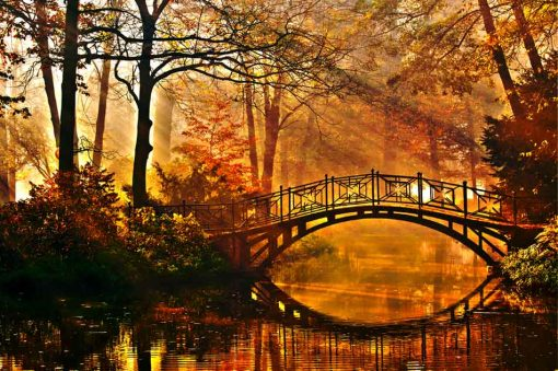 romantic-bridge-autumn-wood