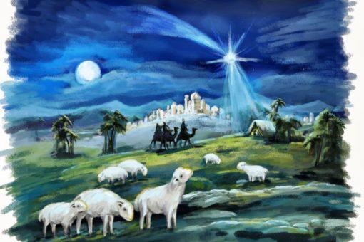 Childrens Nativity Scene 3