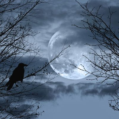 Crow-and-Moon-backdrop